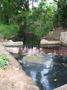Garbage trap put in at head of derivation canal going to farmers' fields through Learning Alliance in IWMI WASPA project